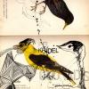 ptaci_1_web